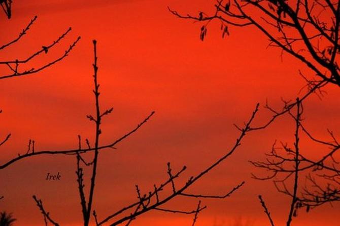 Wschód słońca latem na moim osiedlu