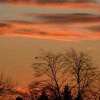 Dzisiejszy zachód słońca u mnie