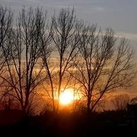 Słoneczny ranek:)