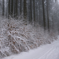 Zimowy szlak, dokąd prowadzi?