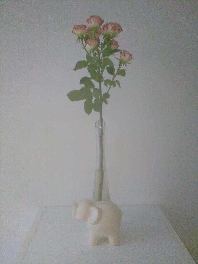 Róża i słonik na szczęście :):):)