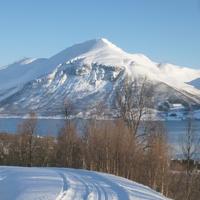 Kolory Arktyki..... dla Ani/panka! :)