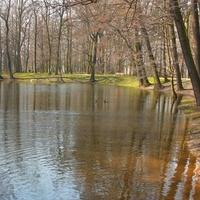 Staw w parku na Mazowszu