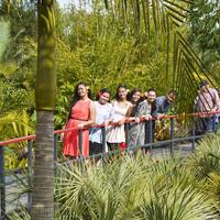 Tropikalne ogrody