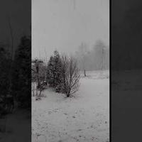 Zima atakuje:):):)