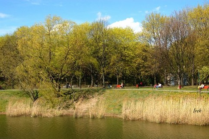 Przyjemnie jest w parku wiosną