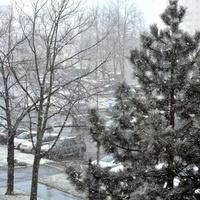 Dzisiaj u mnie padał śnieg