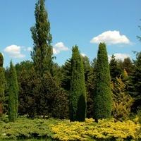 Ogród Botaniczny wczesną jesienią