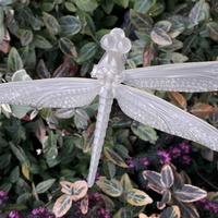 Trójskrzydła ważka-przedmiot Kacperkowego
