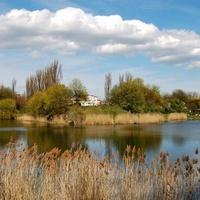 wiosenny widok w parku