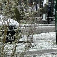 Zima posypała śniegiem:)