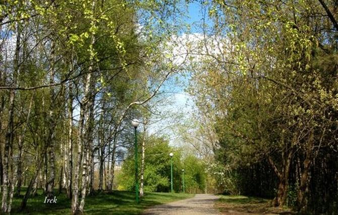 Spacer w parku wiosną