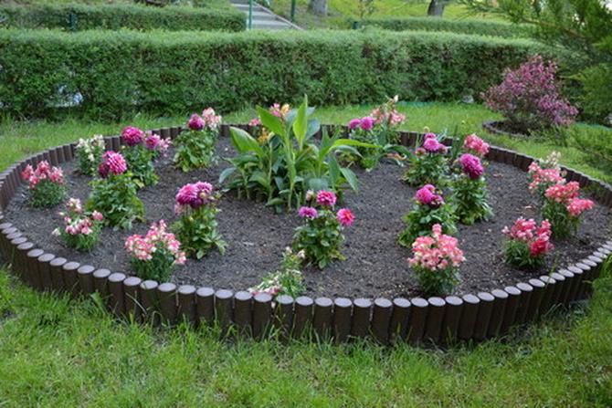 klomb z kwiatami