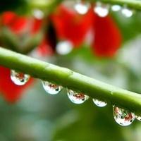 Deszczowo, zimno,