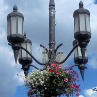 Latarnia przyozdobiona białymi i czerw. kwiatami.