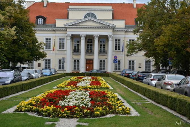 Dywan kwiatowy przed Ambasadą Belgijską.