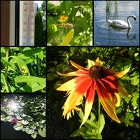 Słoneczny sierpień