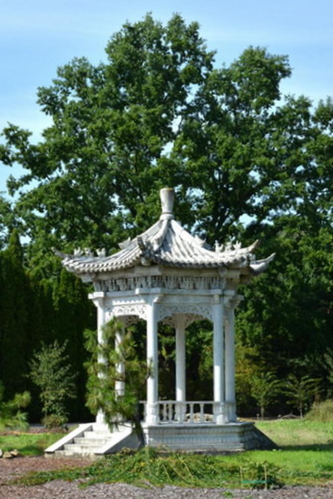 altana w ogrodzie botanicznym