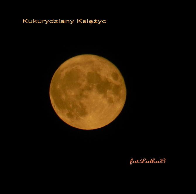 Pełnia Księżyca Plonów