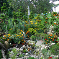 mój jest ten kawałek ogrodu