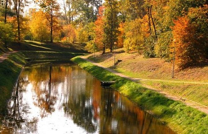 Kolorowe drzewa nad kanałkiem