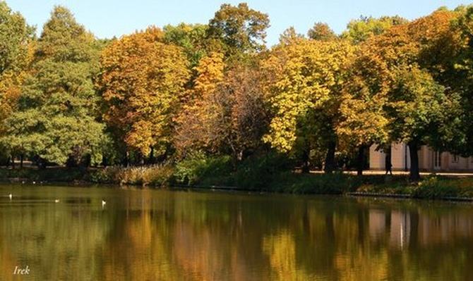 Jesień w Łazienkach Królewskich