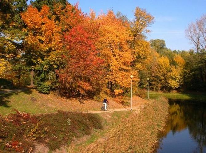 Jesień w parku nad kanałem z wodą