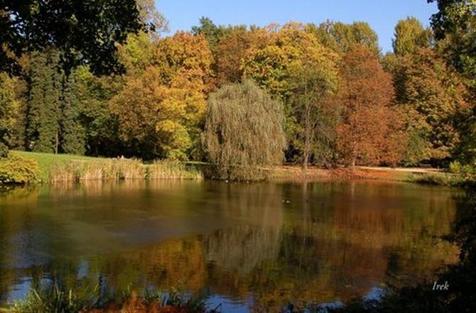 Jesień w parku w moim mieście