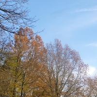 Był błękit, było słońce! :)))