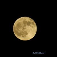 Dzisiaj Pełnia Księżyca