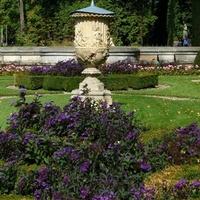 Kwiaty w pięknym Parku Wilanowskim