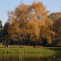 Odpoczynek w parku