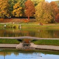 Park ze stawami jesienią