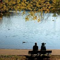 W parku jesienią