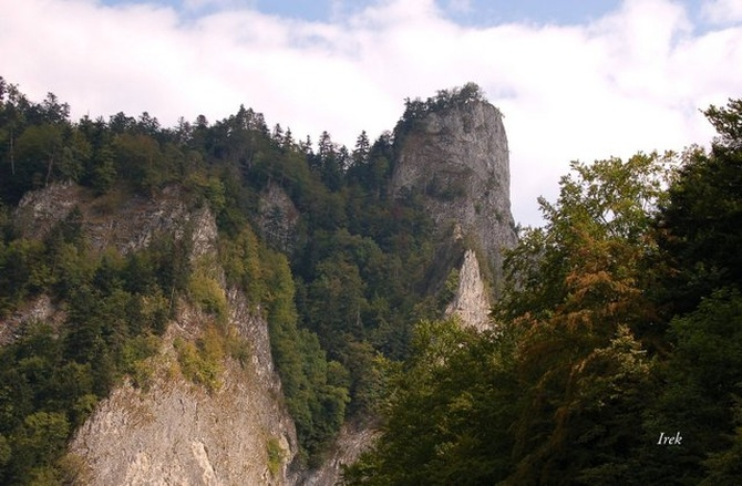 11 XII  Międzyn. Dzień Terenów Górskich