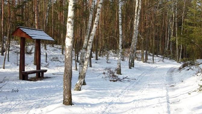 Zima 2007 r.