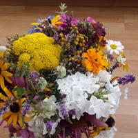 Cała masa kwiatków!