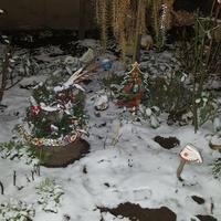 Dziś mnie śnieg zaskoczył o którym