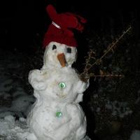Jaka zima taki bałwan :)