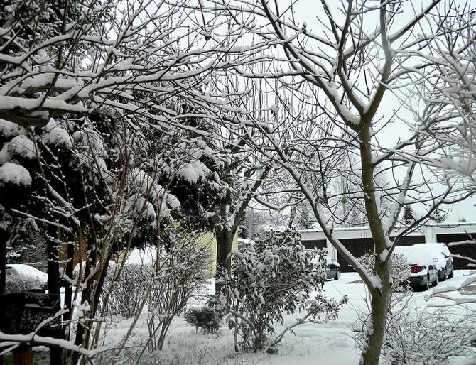 Jest zima, nie ma kolorów;)