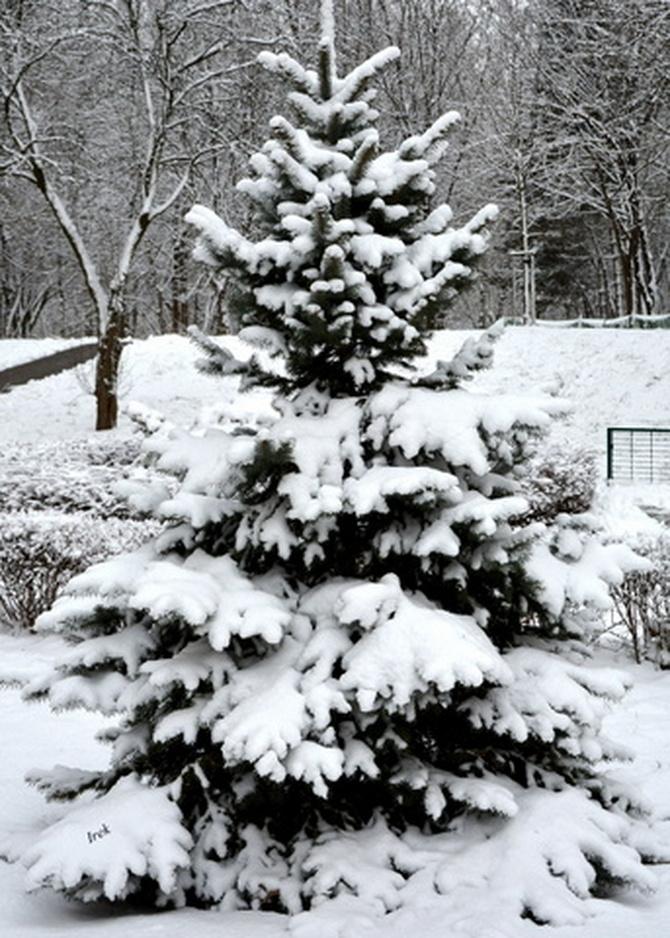 Na moim osiedlu śnieg utrzymuje się nadal