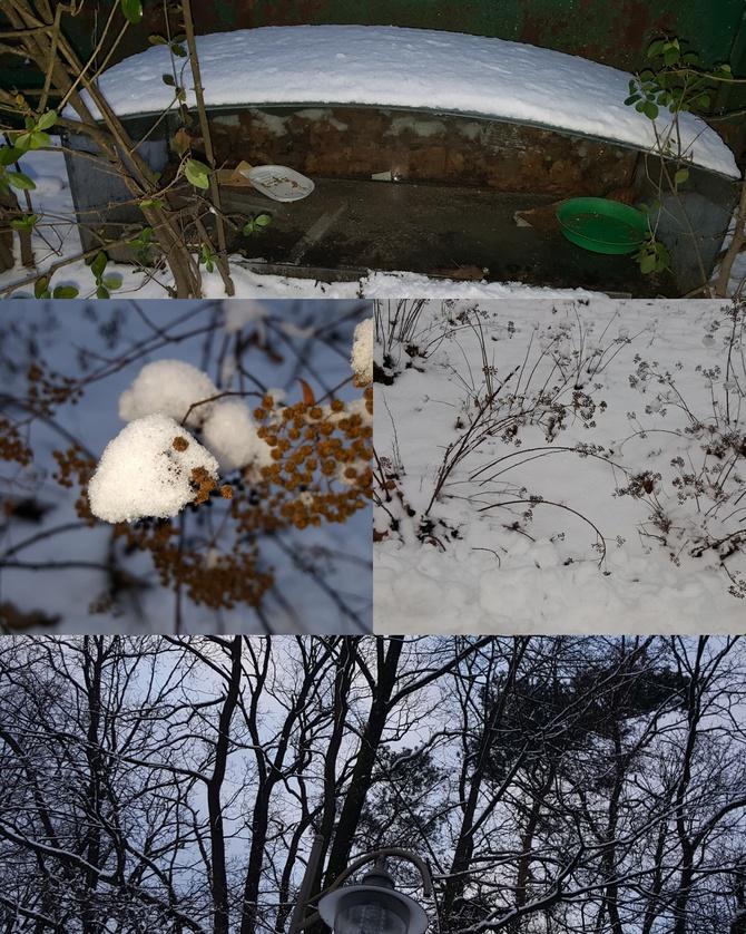 U mnie zima zimno i śnieg...