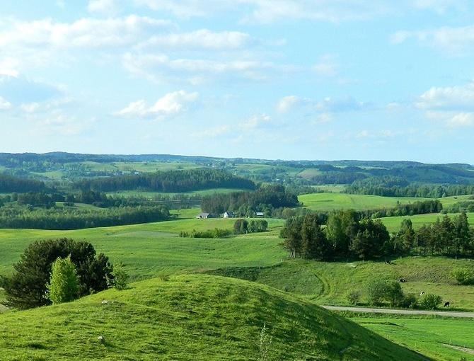 Wiosenny krajobraz:)