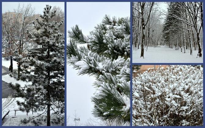 Zima w moim mieście