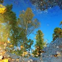 jesienny błękit