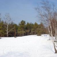 Mazowiecki Park Krajobrazowy zimą