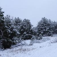 U la la mam zimę :)