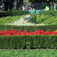 Z - zegar kwiatowy w mieście