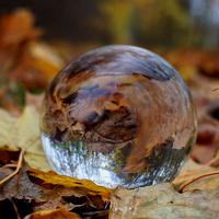 zaczarowany świat jesieni ☺