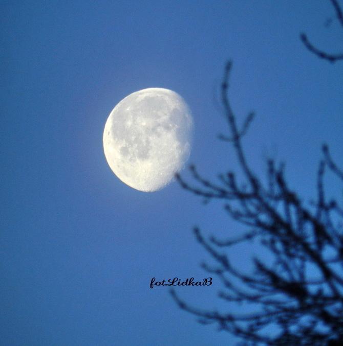 Księżyc Garbaty